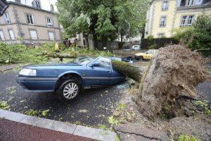 Több mint 21 ezer viharkár bejelentés, bőven akadt munkája a kárszakértőknek. Autóra dőlt fa.