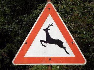 Ha a vadveszélyt jelző tábla alatt nincs távolságbeli kiegészítés, akkor csak a következő útkereszteződésig érvényes